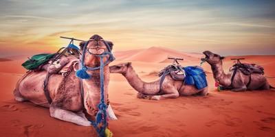 ruta a Merzouga de Ouarzazate