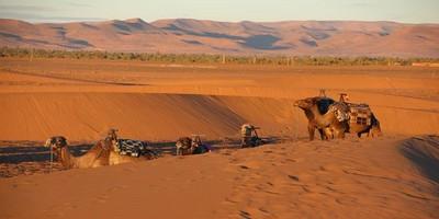 Marruecos viaje de Ouarzazate