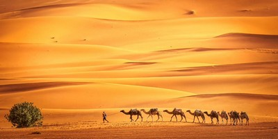 5 days Marrakech Merzouga desert tour